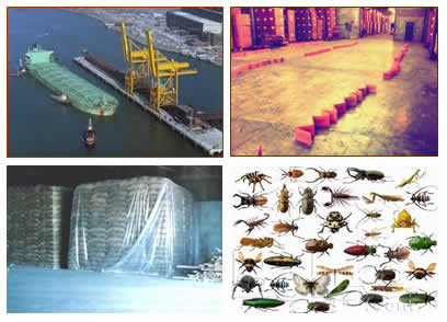 Space Fumigation, Container Fumigation, Stack Fumigation, Silos Bin Fumigation, Ship Fumigation